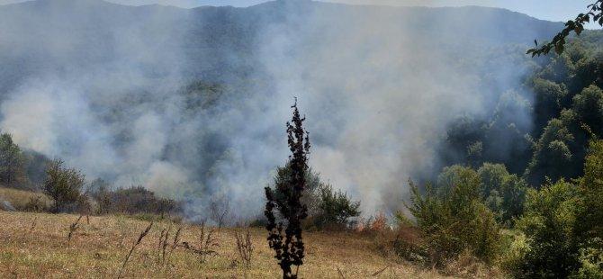 Otları yakayım derken, neredeyse ormanı yakıyordu