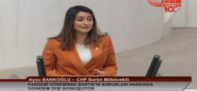 Bankoğlu, Mecliste Bartın'ın Sorunlarını Anlattı