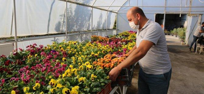 Bartın Belediyesi Bir Yılda 119 Bin Bitki Üretti