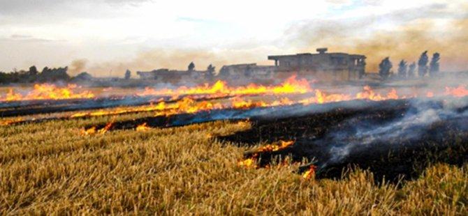 Anız yakılmasına karşı genelge yayımlandı