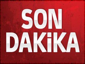 Ereğli'de Tarım Aracı Devrildi: 9 Yaralı