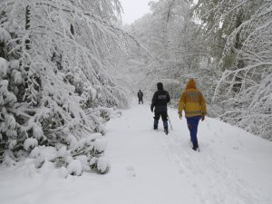 Arama çalışmalarına kar yağışı sebebiyle ara verildi