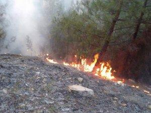 Karabük'te ki yangına Bartın'dan ekip sevk edildi