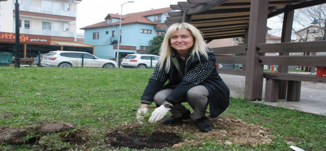Kadın girişimler 40 fidanı toprakla buluşturdu
