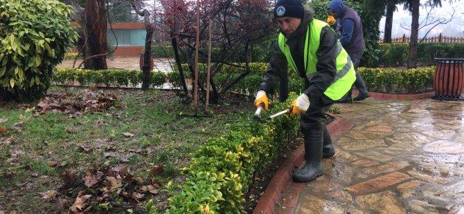 Çiçek ve bitkilere kış bakımı