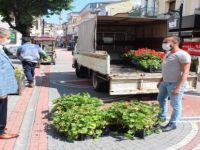 Kent merkezinde bulunan saksılara bitki dikimi yapıldı