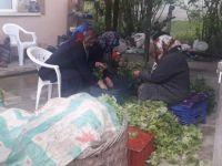 208 köyde çitçilere destek verilecek