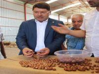 Milletvekili Tunç'tan fındık alımları ile ilgili açıklama