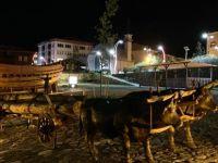Türkiye'nin Tek İç Limanı Eski Görüntüsüne Kavuştu