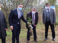 Türkeş'in Anısına Fidan Dikildi