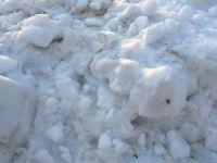 Dondurucudaki Ürünler Bozulmasın Diye Bakın Ne Yapmışlar!