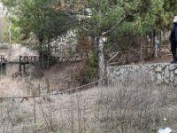 Kent Orman Belediyeye Devredildi