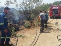 Bir Orman Yangını Haberi de Bölgemizden Geldi
