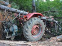 Karabük'te Üzerine Ağaç Devrilen İşçi Öldü