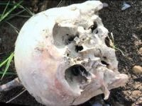 Bartın Irmağı'nda insan kafatası bulundu