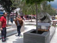 Kent Merkezinde Arılar Oğul Yaptı