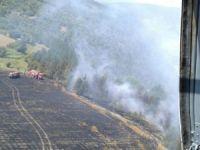 3 dönümlük karaçam ormanı yandı