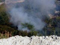 Alaplı'da Orman Yangını