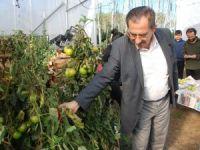 İl Müdürü Bayram, hibe alan genç çiftçileri ziyaret etti