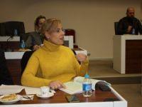 AK Parti Meclis Üyesi Kurtkaya, 2018 yılı bütçesine itiraz etti