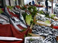 Balıkçılar, Hamsinin Ucuzlaması İçin Kar Yağmasını Bekliyor