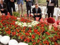 Afrin Gazisi, Şehit Komutanının Kabrini Ziyaret Etti
