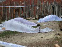 Bolu'da İki Aile Arasında Silahlı Kavga
