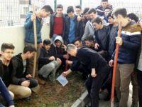 Öğrenciler Okul Bahçesine Zeytin Fidanı Dikti