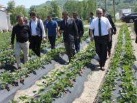 Vali Dirim, genç çiftçileri üretici olmaya davet etti