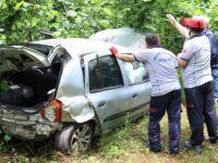 Fındık Bahçesine Devrilen Otomobilin Sürücüsü Yaralandı