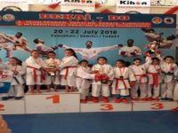 Karatecilerden büyük başarı