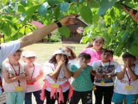'TÜBİTAK 4004 Doğa Eğitimi Projesi' kabul edildi